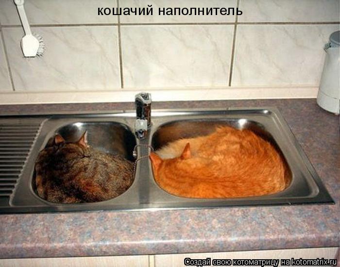 Котоматрица: кошачий наполнитель