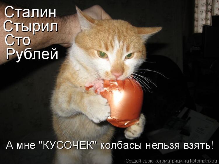 """Котоматрица: Сталин Стырил Сто Рублей А мне """"КУСОЧЕК"""" колбасы нельзя взять!"""