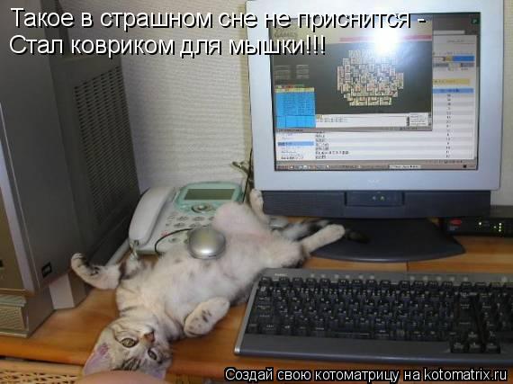 Котоматрица: Такое в страшном сне не приснится -  Стал ковриком для мышки!!!