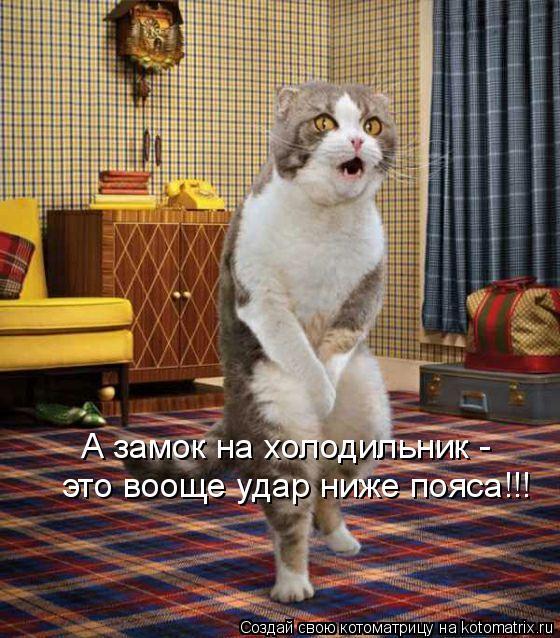Кошек прикольные нарисованные