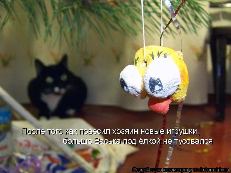 Котоматрица: После того как повесил хозяин новые игрушки больше Васька под ёлкой не тусовался ,