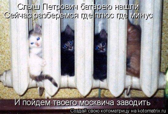 Котоматрица: Слыш Петрович батарею нашли Сейчас разберемся где плюс где минус И пойдем твоего москвича заводить
