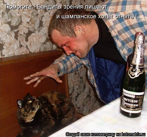 Котоматрица: Помогите ! Бандиты зрения лишают ...  и шампанское хотят отнять !...