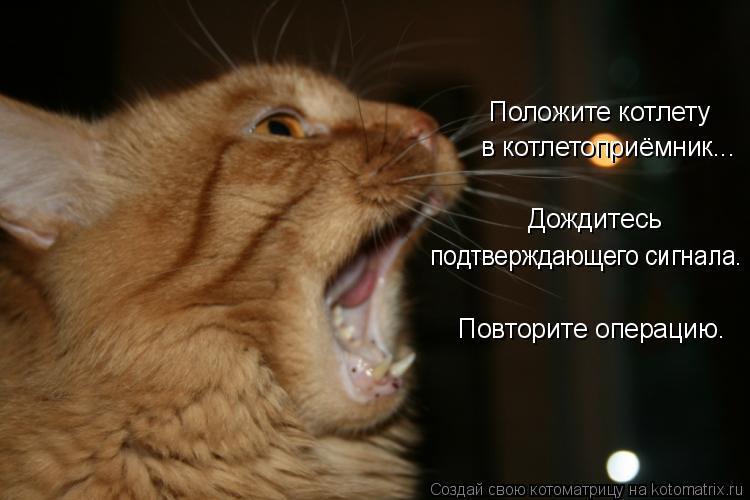 Дождитесь подтверждающего сигнала.  Повторите операцию.  Создай свою котоматрицу на kotomatrix.ru котоматрица,auto.
