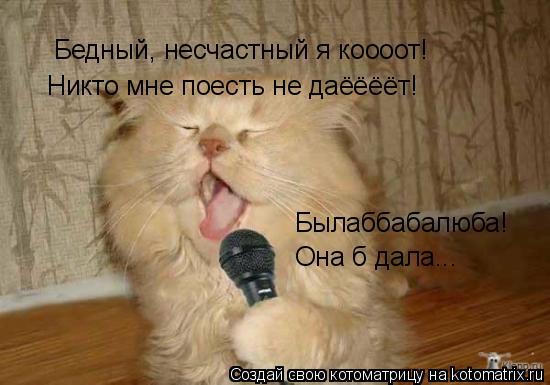 Котоматрица: Бедный, несчастный я коооот! Никто мне поесть не даёёёёт! Былаббабалюба! Она б дала...