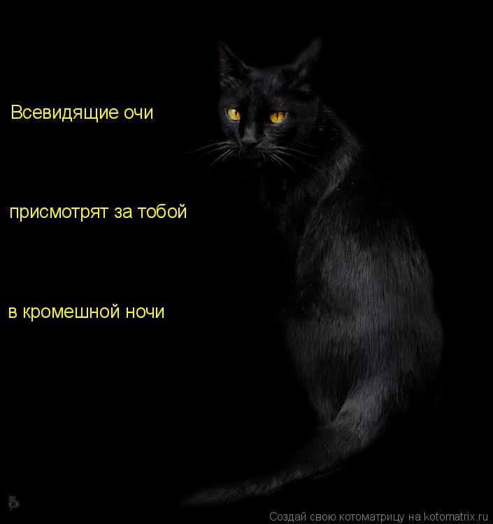 Котоматрица: Всевидящие очи присмотрят за тобой в кромешной ночи