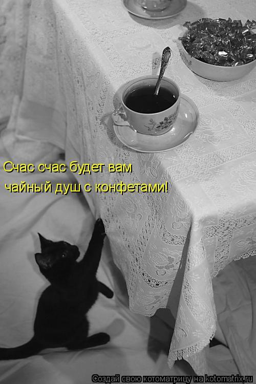 Котоматрица: Счас счас будет вам чайный душ с конфетами!