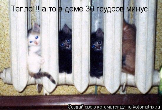 Котоматрица: Тепло!!! а то в доме 30 грудсов минус