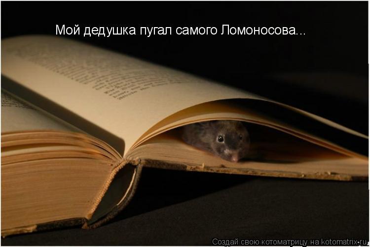 Котоматрица: Мой дедушка пугал самого Ломоносова...