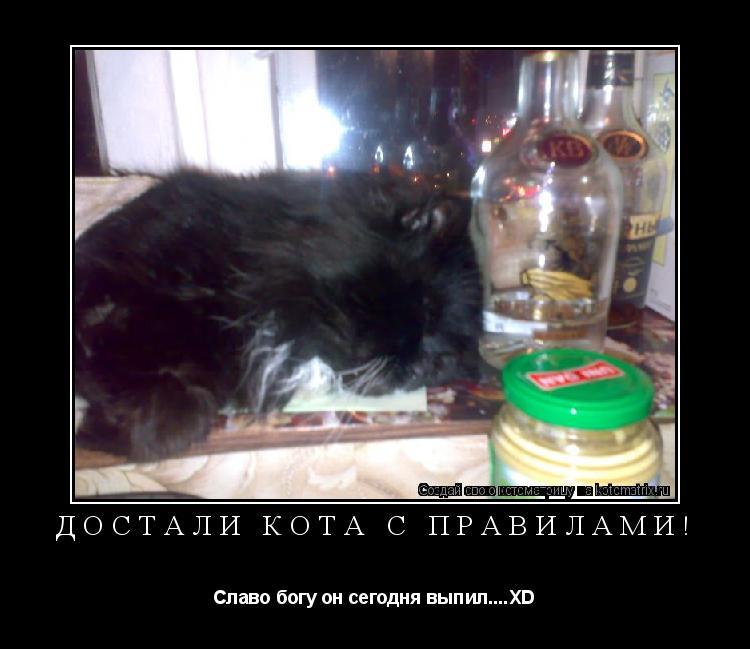 Котоматрица: Достали кота с правилами! Славо богу он сегодня выпил....XD