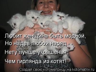 Котоматрица: Любит женщина быть модной, Но надев любой наряд  Нету лучше украшенья,  Чем гирлянда из котят!