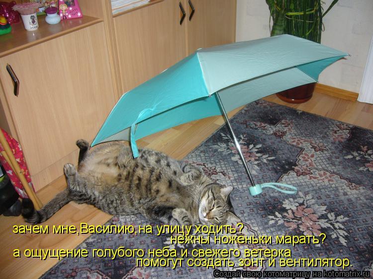 Котоматрица: зачем мне,Василию,на улицу ходить? а ощущение голубого неба и свежего ветерка нежны ноженьки марать? помогут создать зонт и вентилятор.