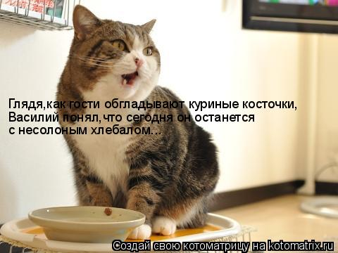 Котоматрица: Глядя,как гости обгладывают куриные косточки, Василий понял,что сегодня он останется с несолоным хлебалом...