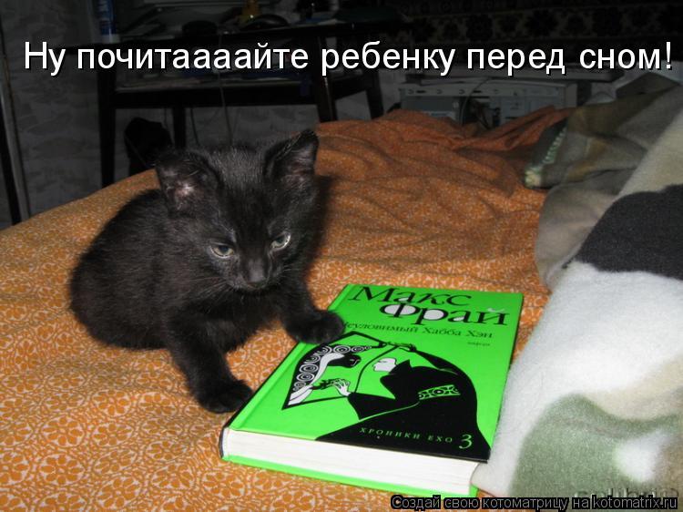 Котоматрица: Ну почитаааайте ребенку перед сном!