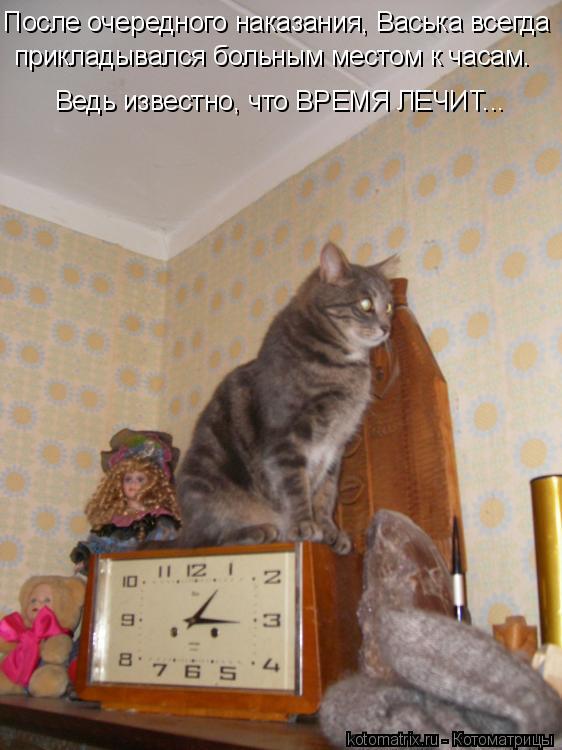 Котоматрица: После очередного наказания, Васька всегда прикладывался больным местом к часам. Ведь известно, что ВРЕМЯ ЛЕЧИТ...