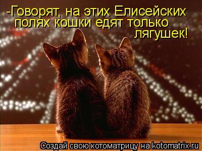Котоматрица: -Говорят, на этих Елисейских  полях кошки едят только  лягушек!