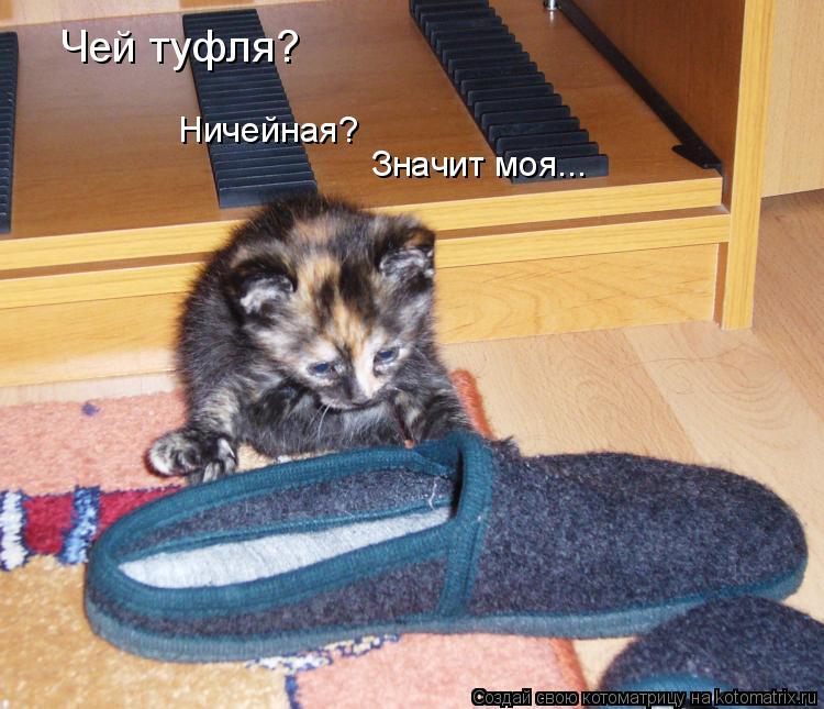 Котоматрица: Чей туфля? Ничейная? Значит моя...