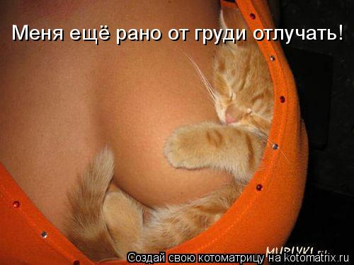 Котоматрица: Меня ещё рано от груди отлучать!