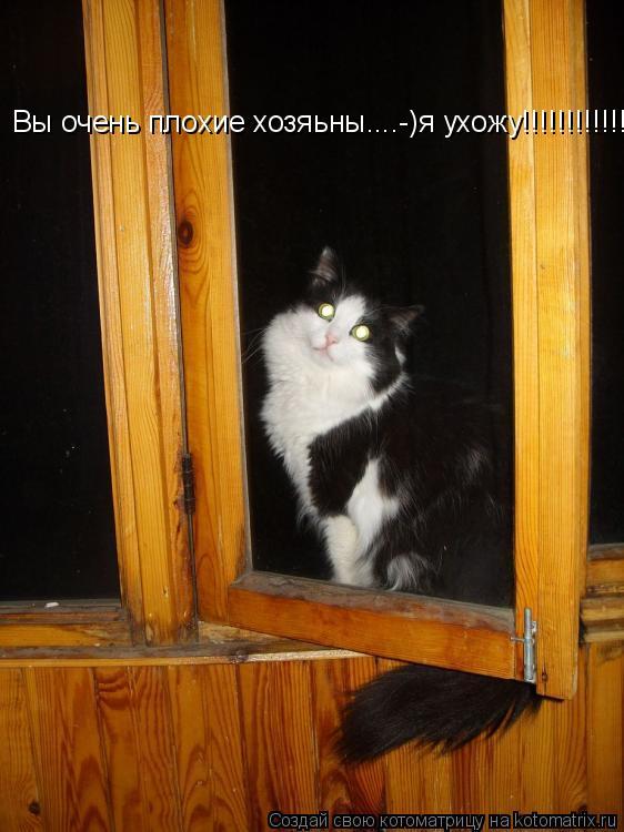 Котоматрица: Вы очень плохие хозяьны....-)я ухожу!!!!!!!!!!!!