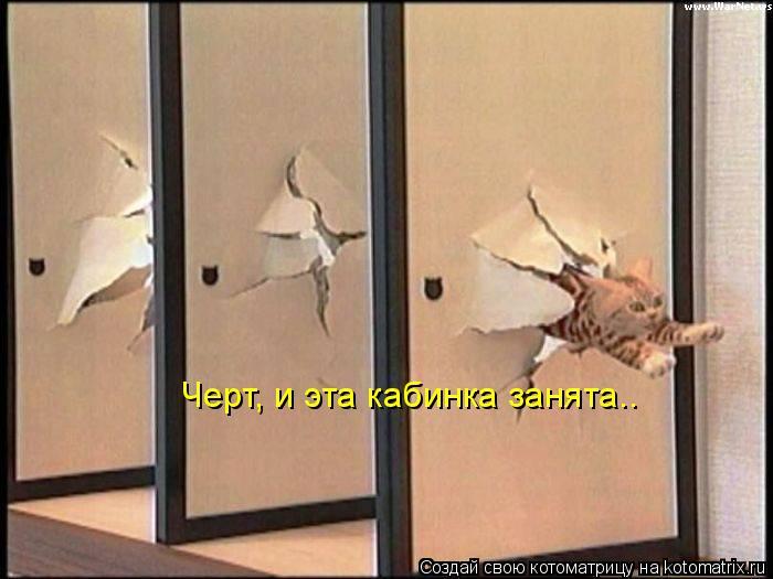 Котоматрица: Черт, и эта кабинка занята..