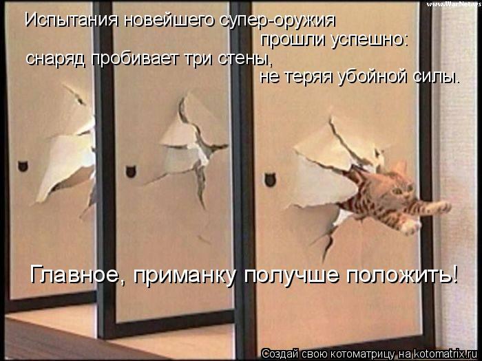 Котоматрица: Испытания новейшего супер-оружия прошли успешно: снаряд пробивает три стены,  не теряя убойной силы. Главное, приманку получше положить!