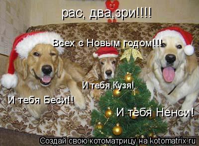 Котоматрица: рас, два,зри!!!!  Всех с Новым годом!!! И тебя Беси!! И тебя Кузя! И тебя Ненси!