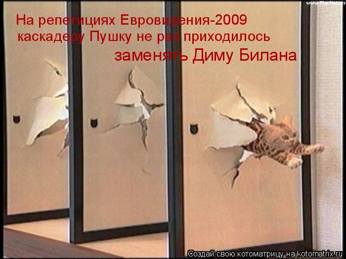 Котоматрица: На репетициях Евровидения-2009 каскадеру Пушку не раз приходилось  заменять Диму Билана
