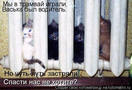 Котоматрица: Мы в трамвай играли, Васька был водитель. Но чуть-чуть застряли Спасти нас не хотите?