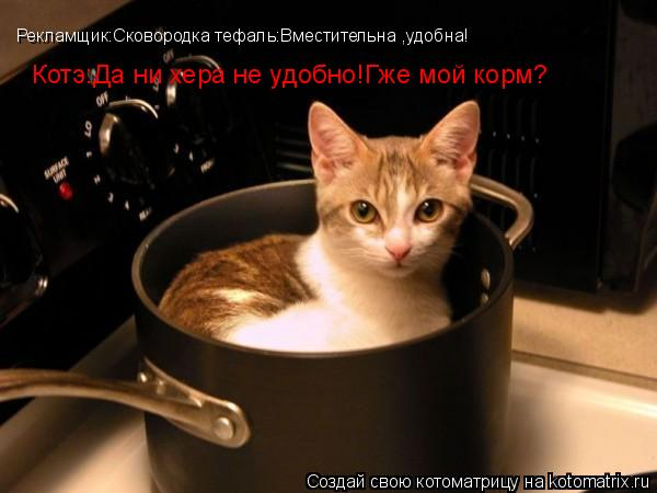 Котоматрица: Рекламщик:Сковородка тефаль:Вместительна ,удобна! Котэ:Да ни хера не удобно!Гже мой корм?