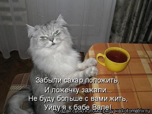 Котоматрица: Забыли сахар положить,  И ложечку зажали... Не буду больше с вами жить,  Уйду я к бабе Вале!