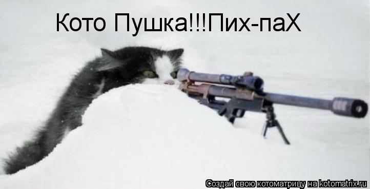 Котоматрица: Кото Пушка!!!Пих-паХ