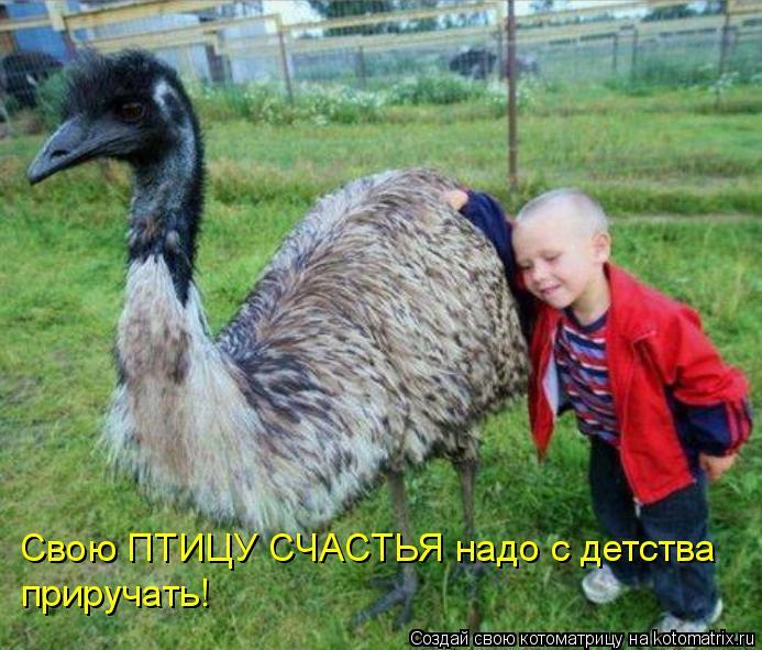 Котоматрица: Свою ПТИЦУ СЧАСТЬЯ надо с детства приручать!