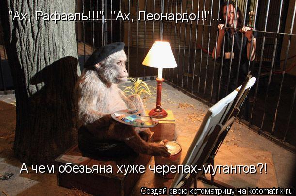 "Котоматрица: ""Ах, Рафаэль!!!"", ""Ах, Леонардо!!!""... А чем обезьяна хуже черепах-мутантов?!"