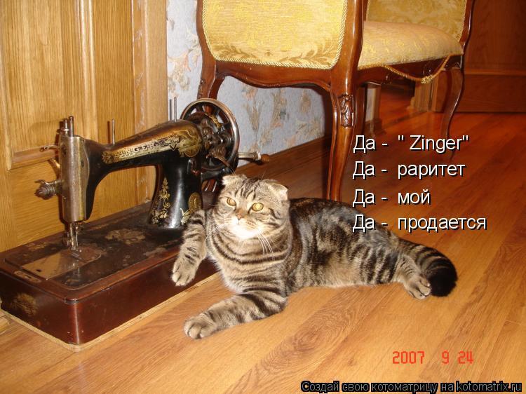 """Котоматрица: Да -  """" Zinger"""" Да -  раритет Да -  мой Да -  продается"""