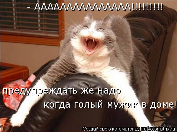 Котоматрица: - ААААААААААААААА!!!!!!!!! предупреждать же надо  когда голый мужик в доме!