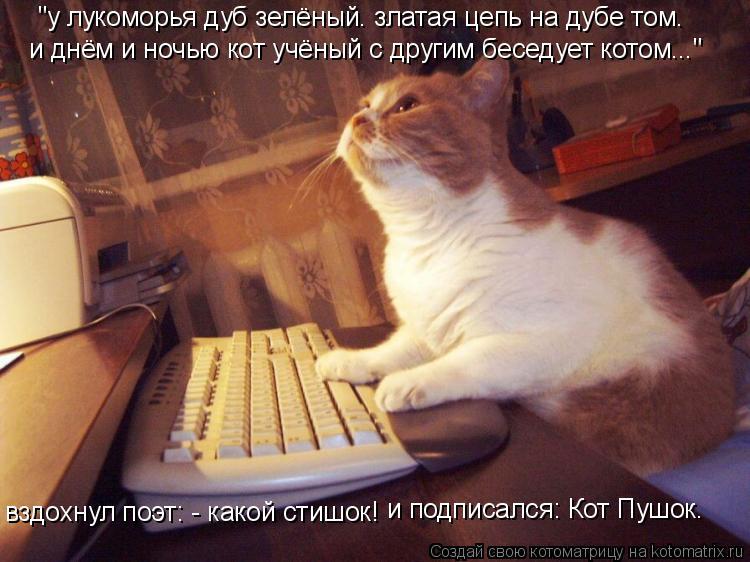 """Котоматрица: """"у лукоморья дуб зелёный. златая цепь на дубе том. и днём и ночью кот учёный с другим беседует котом..."""" вздохнул поэт: - какой стишок! и подписа"""