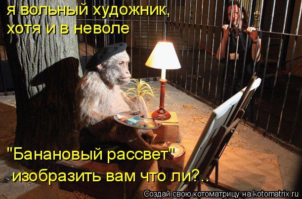 """Котоматрица: я вольный художник, хотя и в неволе """"Банановый рассвет"""" изобразить вам что ли?.."""