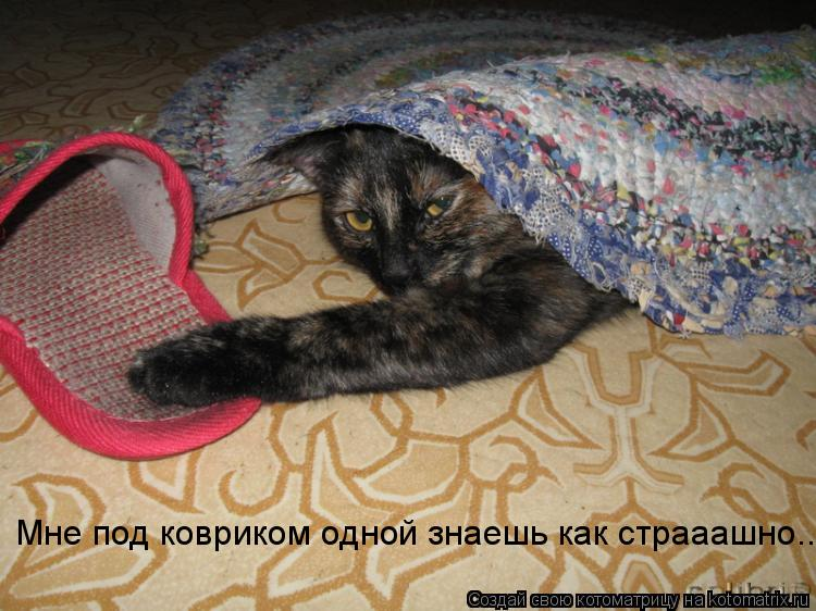 Котоматрица: Мне под ковриком одной знаешь как страаашно...