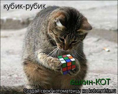 Котоматрица: кубик-рубик ёшкин-КОТ