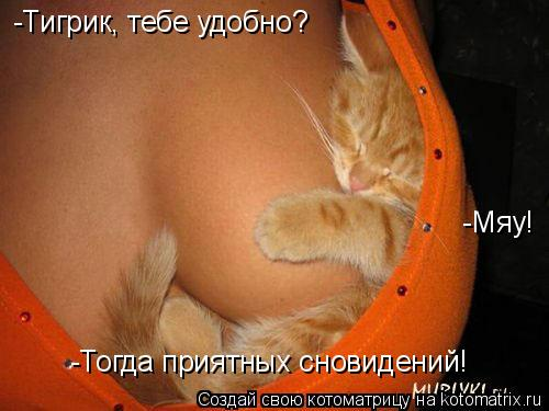 Котоматрица: -Тигрик, тебе удобно? -Мяу! -Тогда приятных сновидений!