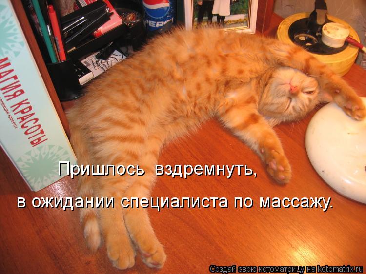 Котоматрица: Пришлось  вздремнуть,  в ожидании специалиста по массажу.