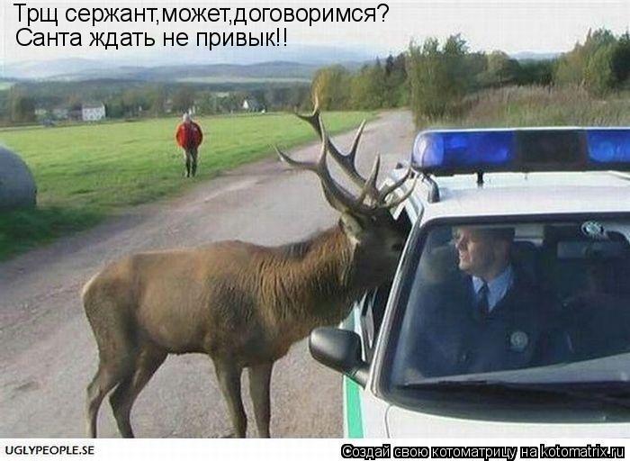 Котоматрица: Трщ сержант,может,договоримся? Санта ждать не привык!!