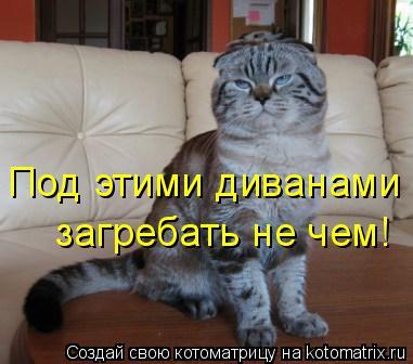 Котоматрица: Под этими диванами  загребать не чем!