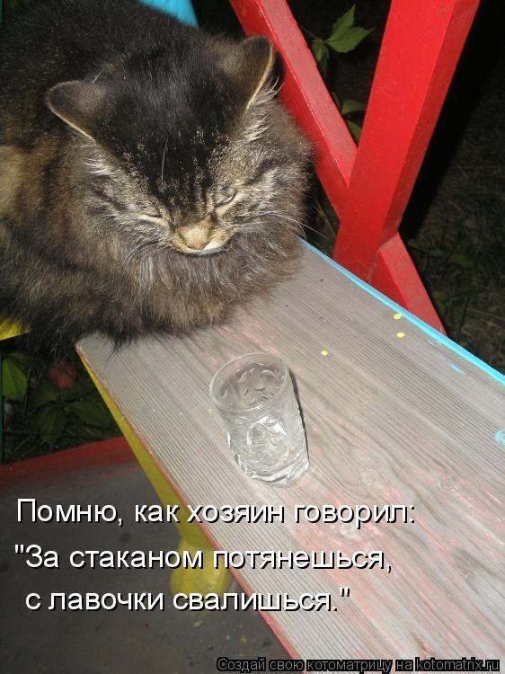 """Котоматрица: Помню, как хозяин говорил: """"За стаканом потянешься, с лавочки свалишься."""""""