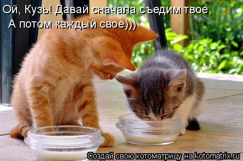 Котоматрица: Ой, Кузь! Давай сначала съедим твое, А потом каждый свое)))