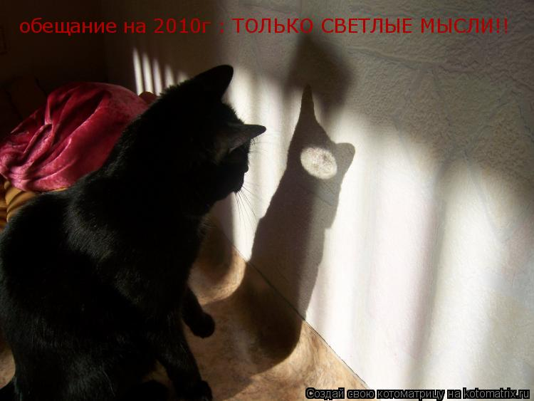 Котоматрица: обещание на 2010г : ТОЛЬКО СВЕТЛЫЕ МЫСЛИ!!