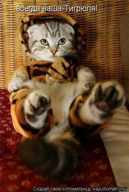 Котоматрица: всегда ваша-Тигрюля!