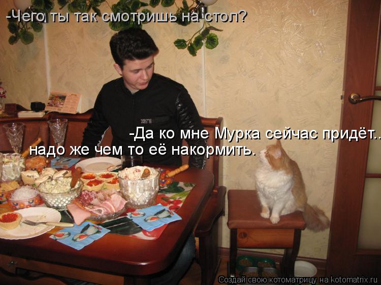 Котоматрица: -Чего ты так смотришь на стол? -Да ко мне Мурка сейчас придёт... надо же чем то её накормить.