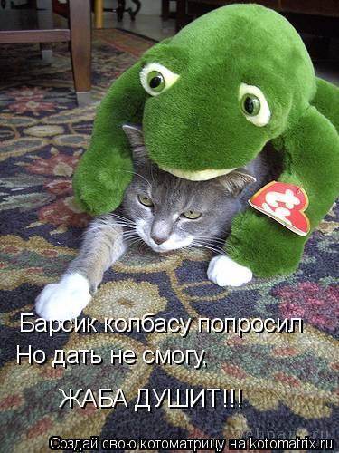 Котоматрица: Барсик колбасу попросил  Но дать не смогу, ЖАБА ДУШИТ!!!