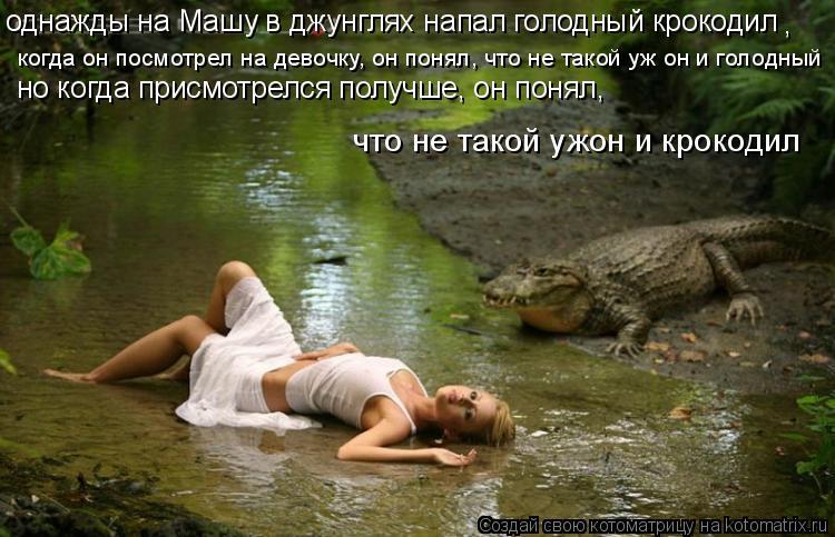 Котоматрица: однажды на Машу в джунглях напал голодный крокодил , когда он посмотрел на девочку, он понял, что не такой уж он и голодный но когда присмотр
